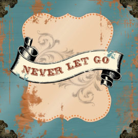 Never Let Go (2014)